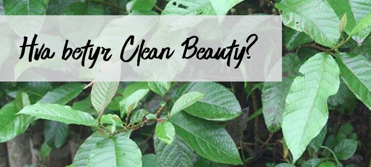 Hva betyr ordet CLEAN innenfor beauty?